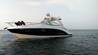 Chaparral 310 Signature Cruiser