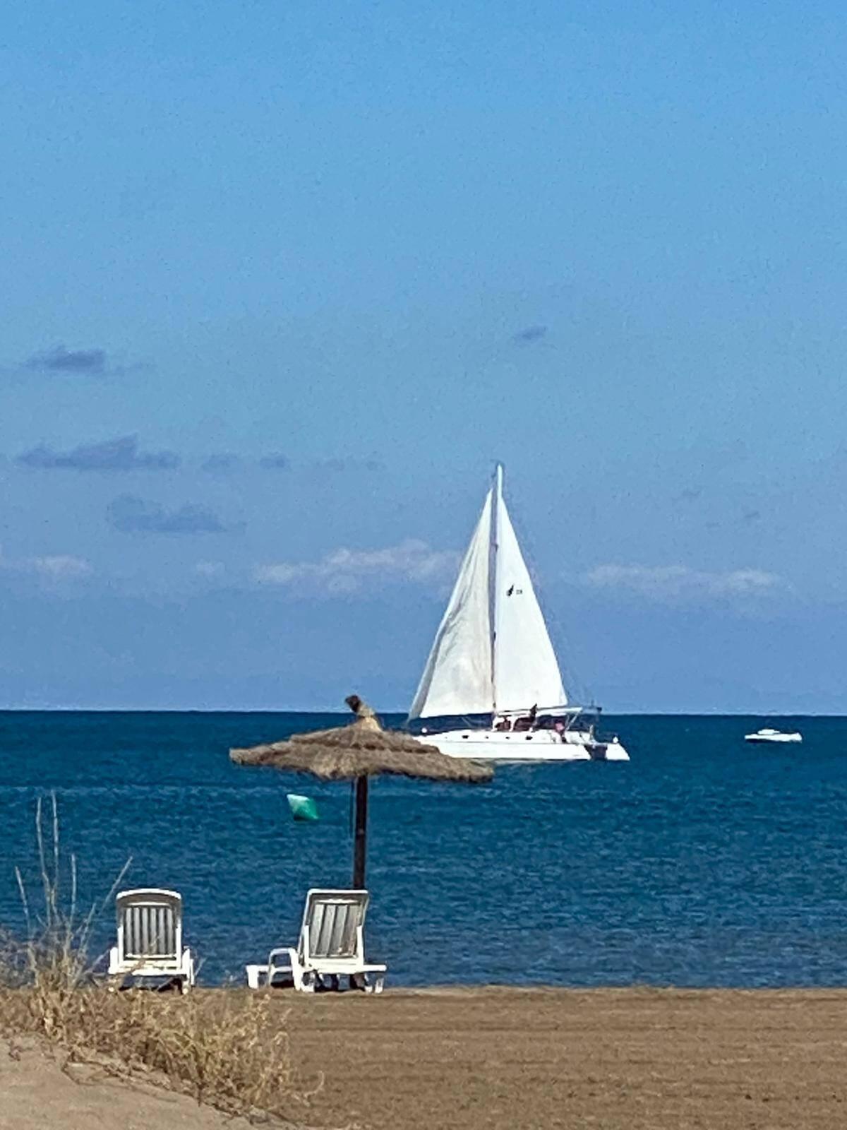 full sail Otto Schein Catamaran Yacht For Sale