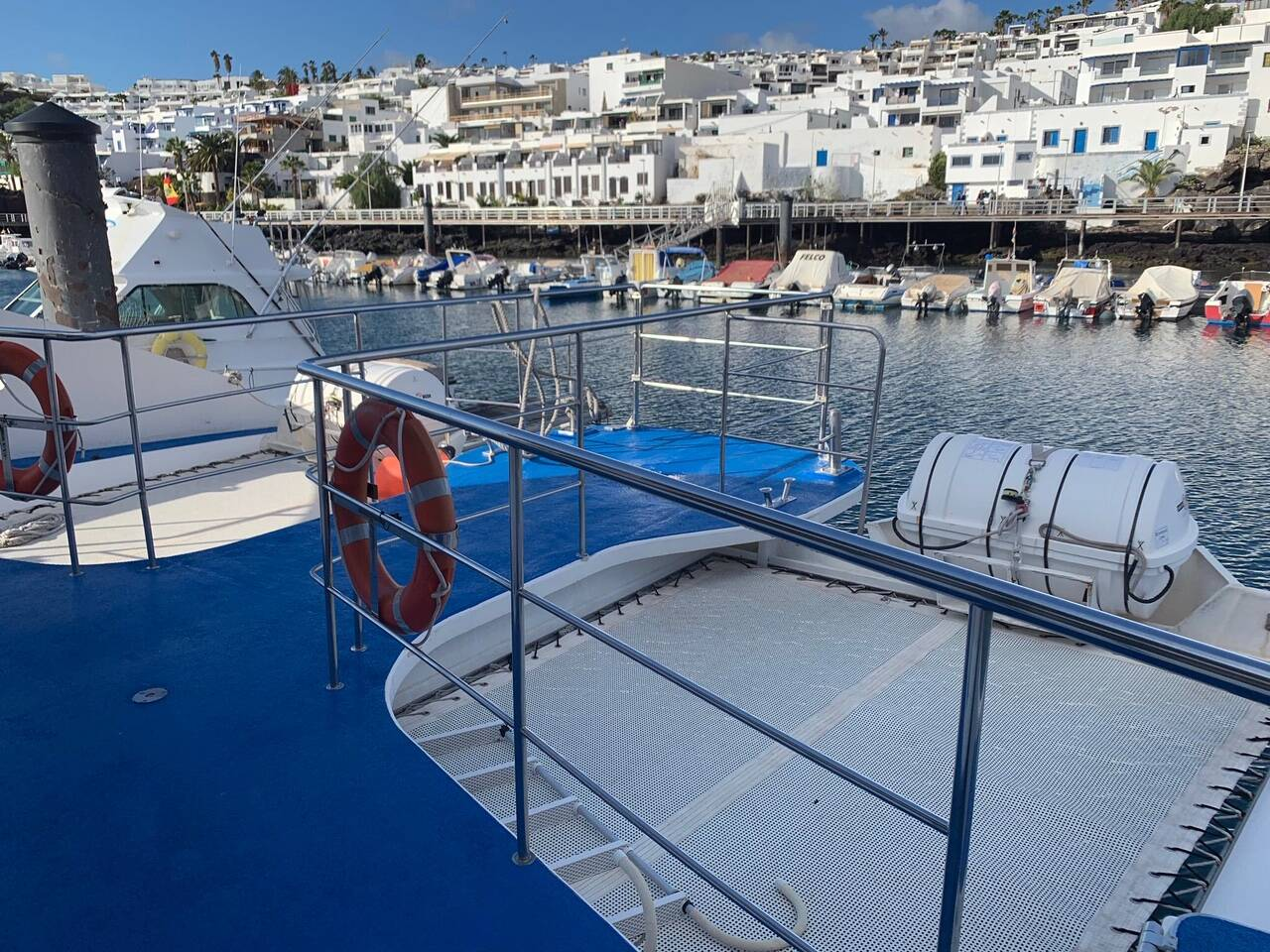 Platform view Commercial Catamaran Glass Bottom Boat for sale